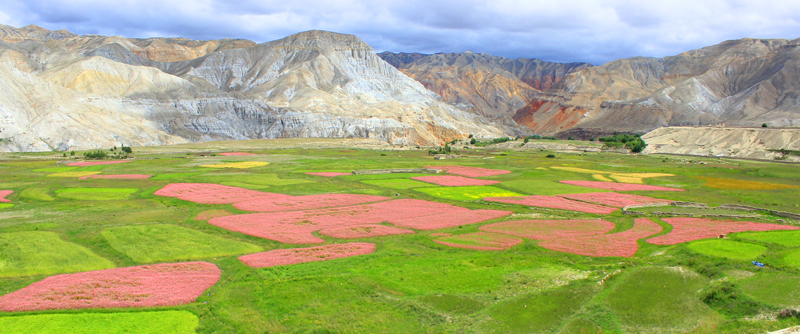 facts about Upper Mustang